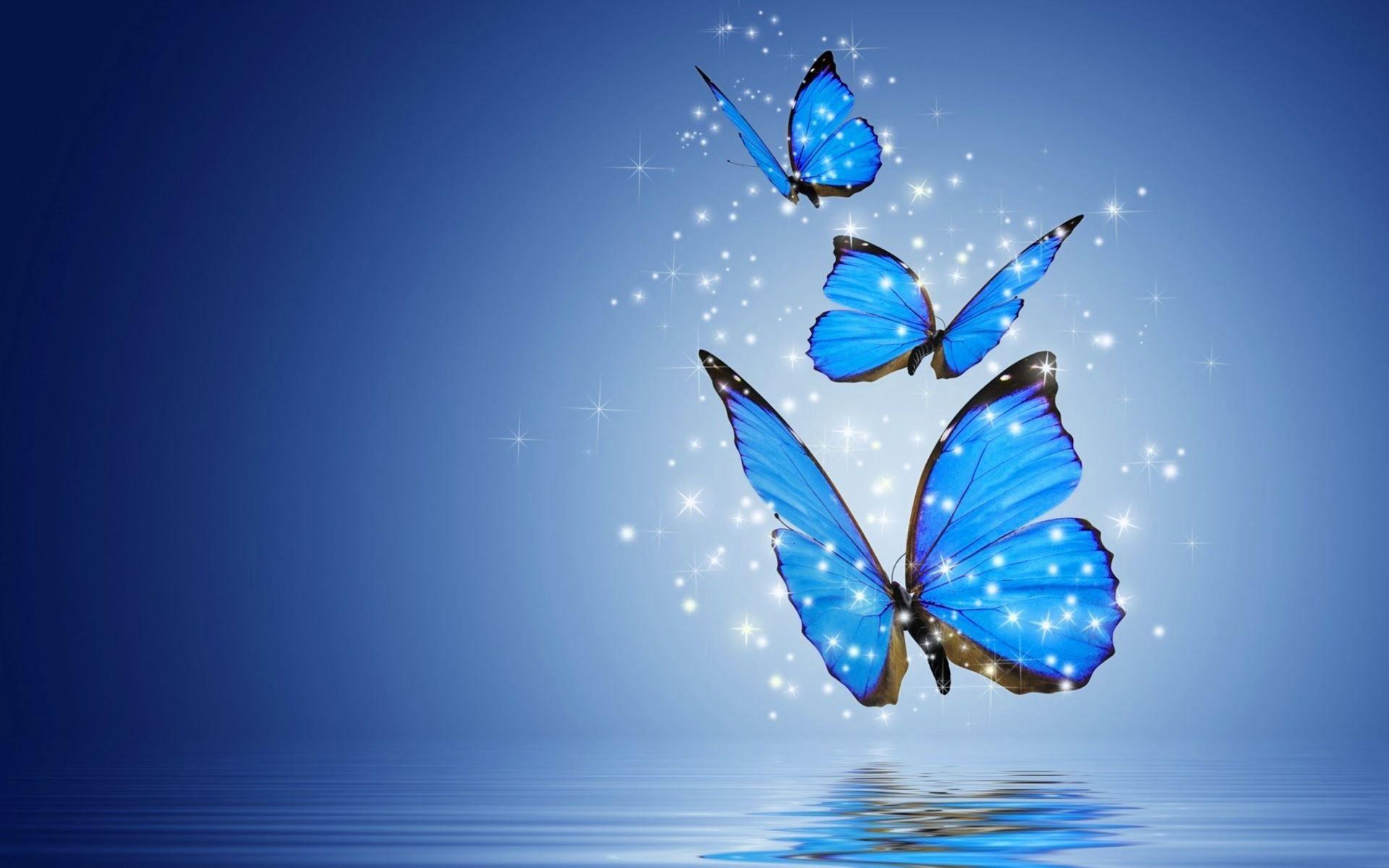 Mavi kelebek – Bölüm 17